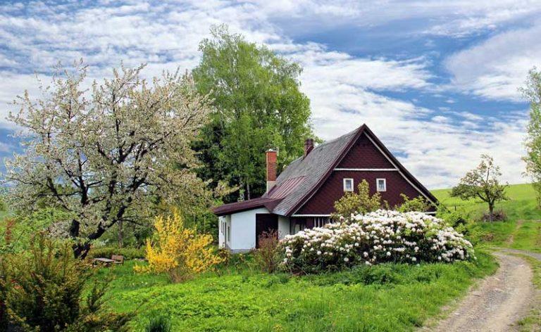 Innovative Gartengestaltung auf hohem Niveau