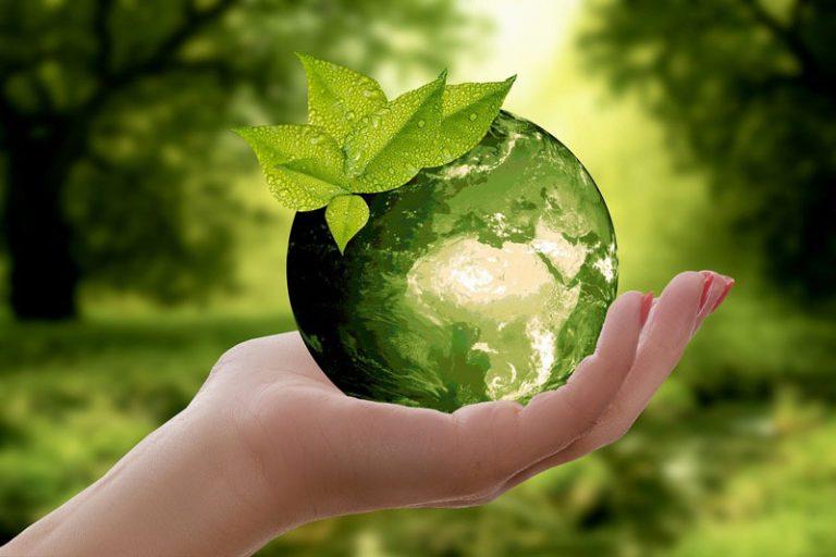 Neumünster: Nachhaltige Beschaffung bei der Stadtverwaltung