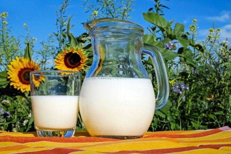Täglich frische Milch aus dem Milchautomaten